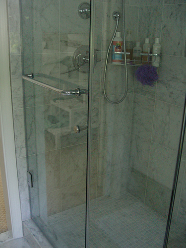 shower-door
